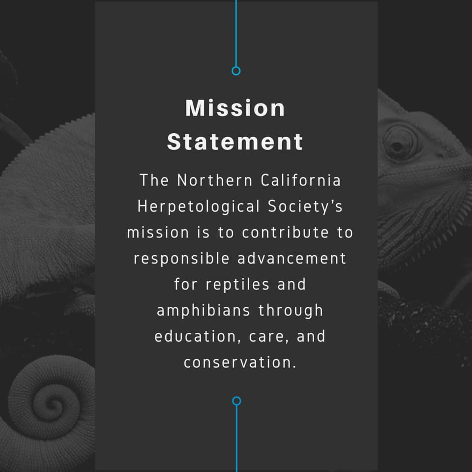 The Northern California Herpetological Society's mission is to contribute to responsible advancement for reptiles and amphibians through education, care, and conservation.